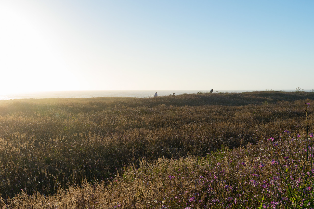 Hikers on bluff at sunset, Fort Bragg, CA