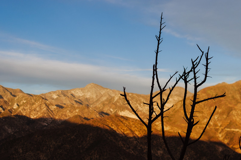 Remnants of the Station Fire near the ranger station where the fire started in the Angeles National Forest.