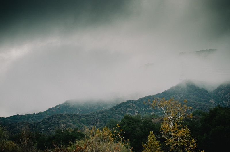 Eaton Canyon on a stormy winter day.
