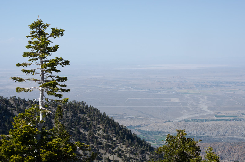 Another view from the top of Mt. Williamson in the San Gabriel Valley. The scarp toward the bottom of the photo on the righthand side marks the San Andreas Fault rift zone.