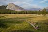 Lembert Dome, Yosemite