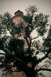 Ocracoke Island Tree Light