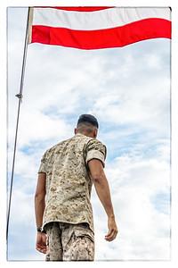 Soldier Back Flag
