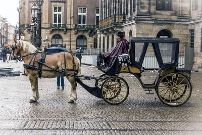Amsterdam Buggy