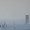 Early morning fog at Lake Ginninderra