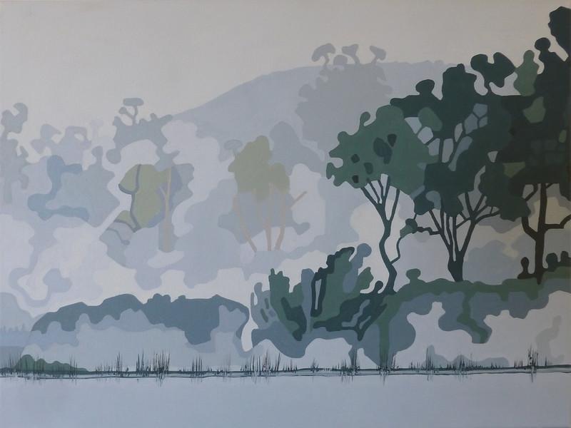 Morning mist at Dunns Swamp