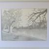 Kinchega NP 'Darling River 2007'