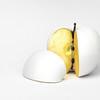 Apple wedge