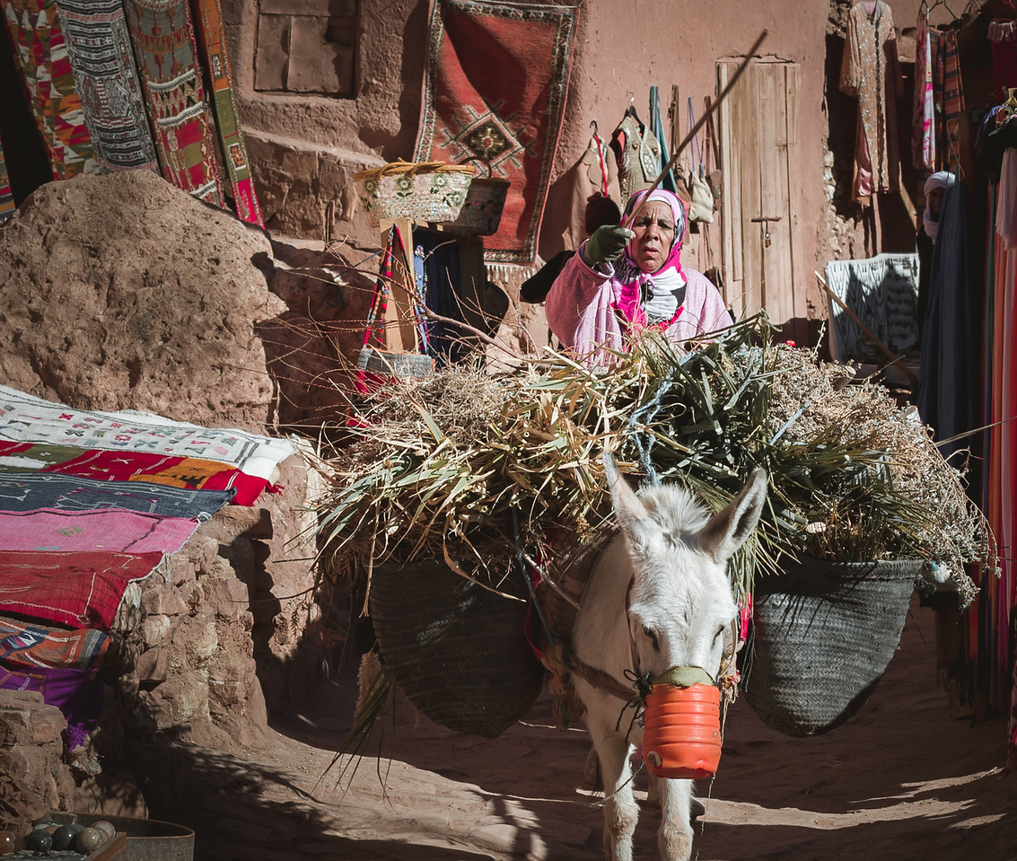 Woman with her mule