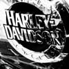 FOTO GOLL - HARLEY DAVIDSON - 20090628_IMG_1374