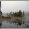 Cedar River Flow