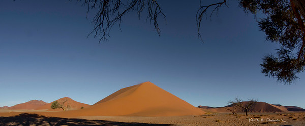 Panoramic view of Dune 45 at Sossusvlei