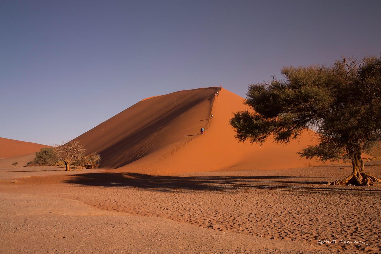 Climbing the ridge of Dune 45 at Sossusvlei