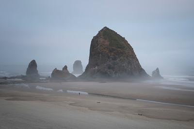 Foggy Morning at Haystack Rock