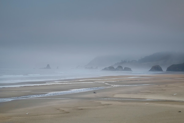 Pacific Coast Fog