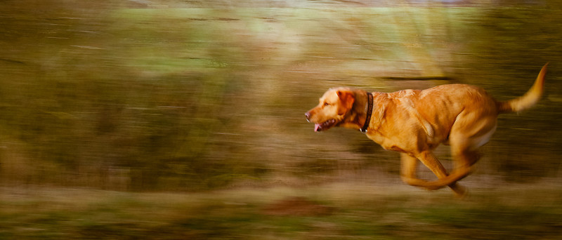 experiments with panning