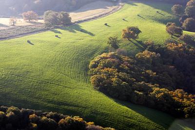 Aux alentours de St Pee sur Nivelle Des palombières dans les champs. Photo prise à l'automne 2007