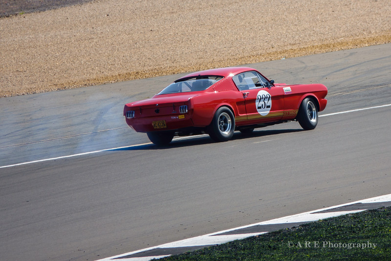 232 Alasdair COATES (C3) Ford Shelby Mustang GT 350