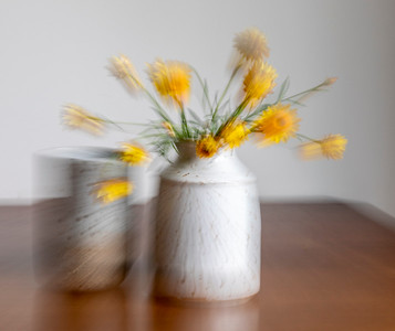 Rooney_Yellow Flowers in Vase
