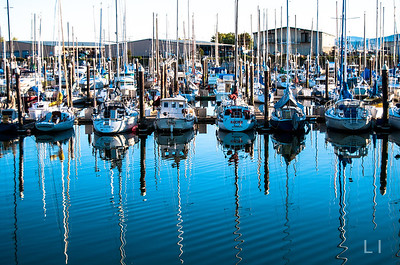 Masts in Reflection