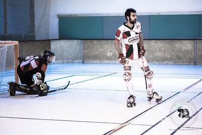 JV - JDS - Rink Hockey - 314