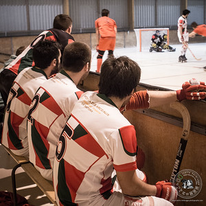 JV - JDS - Rink Hockey - 422