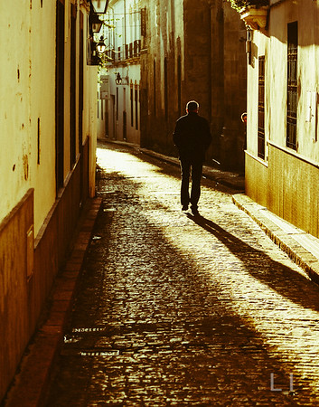 Man in Sunlit Alley