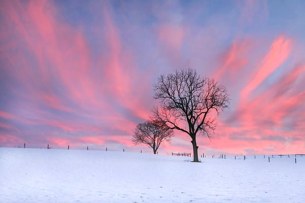 Pastel Sky