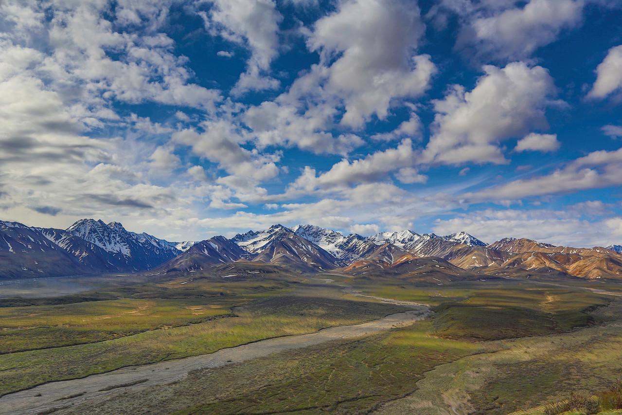 Alaska Range from Denali Park Road
