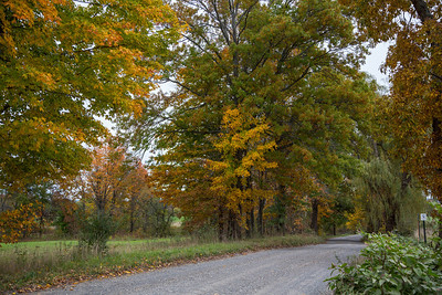 MOODY BRIDGE ROAD IN THE FALL