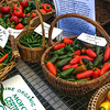 Peppers at the Common Ground Fair