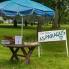 Hadley asparagus for sale