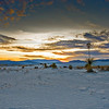 Sundown and Soaptree Yucca at White Sands National Monument