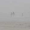 The fog walkers at Popham Beach