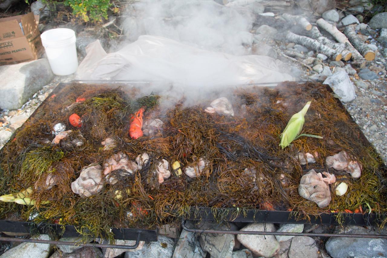 Old fashioned New England clambake, Hog Island, August 2014