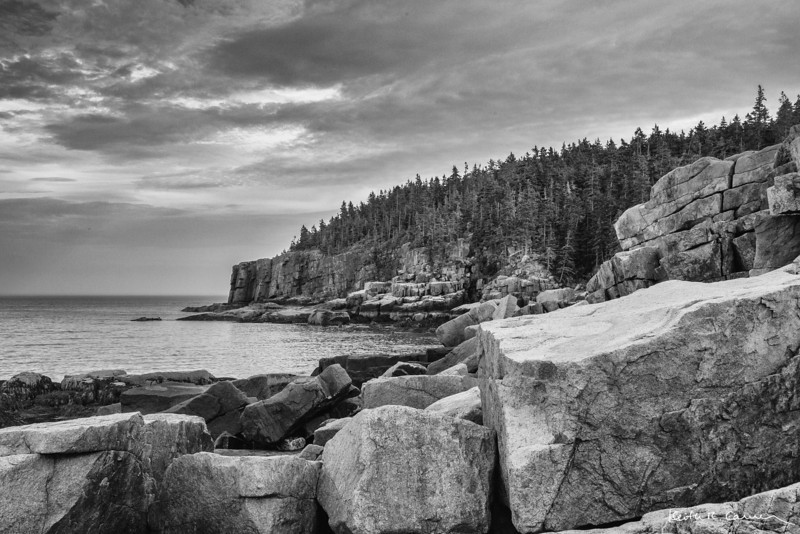 Otter Cliffs, Acadia NP