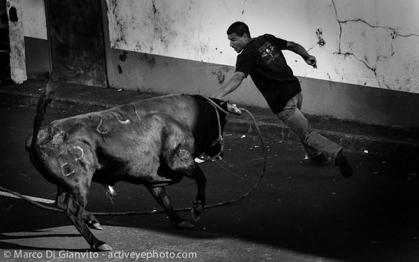 Azores, Sao Jorge - Tourada à corda