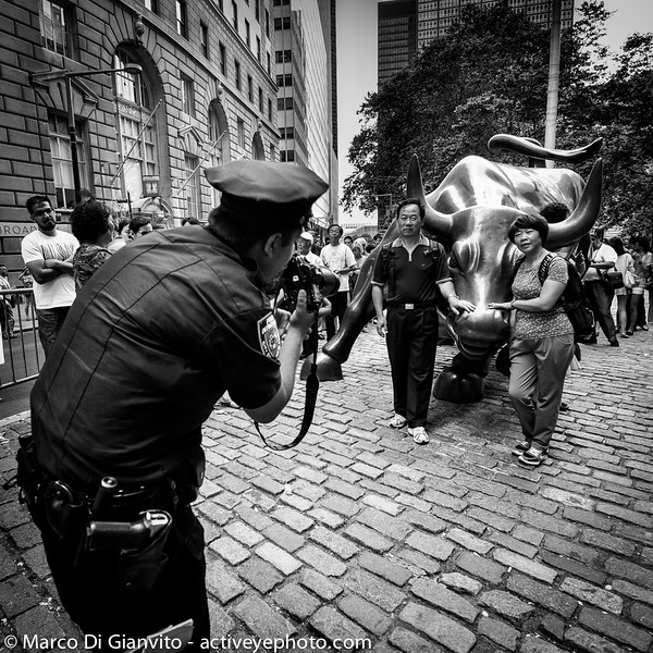 Manhattan - Petting the bull
