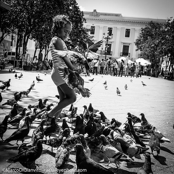 Puerto Rico = Plaza de Armas en el Viejo San Juan