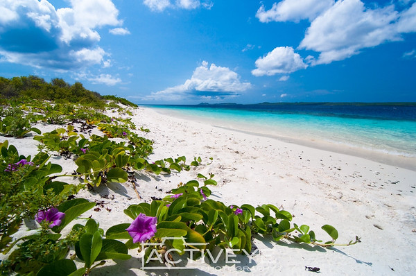 32. No Name beach - Klein Bonaire (Dutch Caribbean)