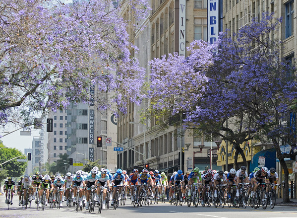 The Tour of California's 8th stage took cyclists on several laps around downtown Los Angeles. The above photo was taken on Hill Street between 7th and 8th. I was lucky to find a place where there were actually jacaranda trees in bloom. The shot isn't as crisp as I would have liked, owing (I think) to some sand in my 200 mm lens. Rrrrrrgh!