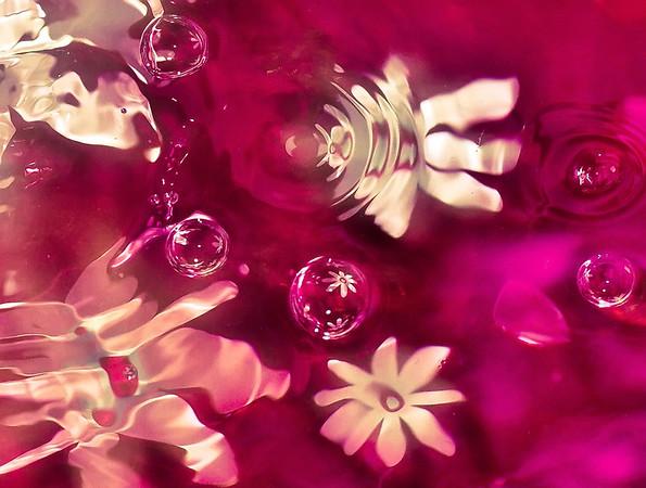 daisy drops
