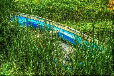 Green Grass Blue Boat