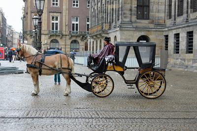 Amsterdam Carriage at Koninklijk Paleis (Dam Square)