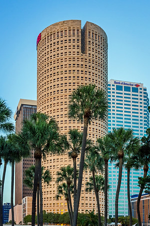 Lykes Building with Palm Trees Tampa