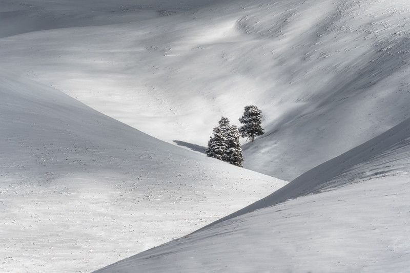 Layers of Winter