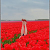Red shoes and tulips and legs