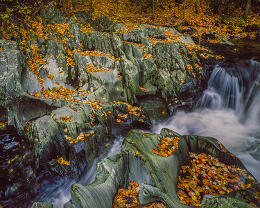Rocky Stream & Fall Leaves I