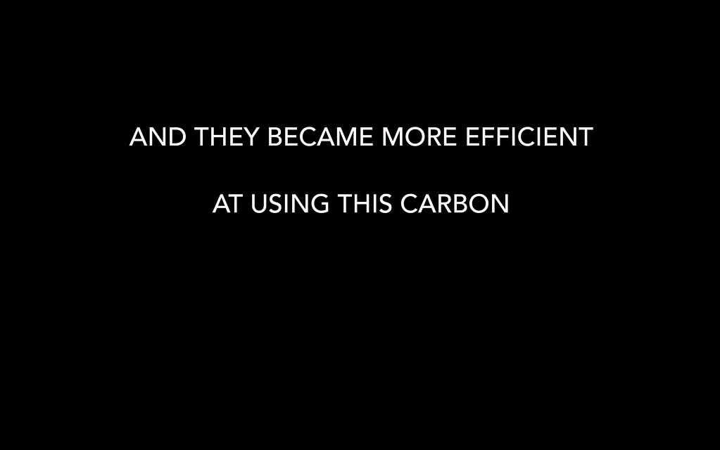AND THEY BECAME MORE EFFICIENT