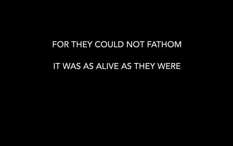 FOR THEY COULD NOT FATHAM
